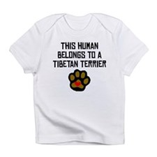 This Human Belongs To A Tibetan Terrier Infant T-S