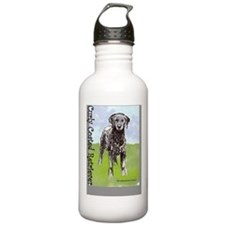 Curly Coated Retriever Sports Water Bottle
