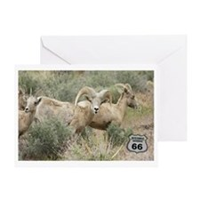 bighorn on 66 Greeting Card