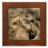Prairie Dog, Framed Tile