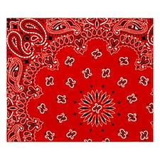 BBQ Red Paisley Bandana Scarf Western Fabric Print