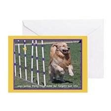 Golden Retriever Forgetz Birthday Greeting Card