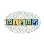 Pisher Elements Oval Car Magnet