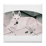 White German Shepherd Dog, to Tile Coaster