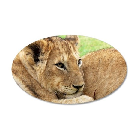 Lion 35x21 Oval Wall Decal
