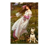 Windflowers Bull Terrier Postcards (Package of 8)