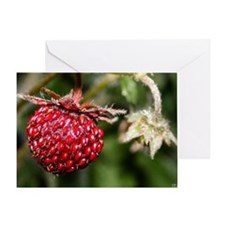 Mountain Strawberry Greeting Card