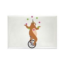 Juggling Bear Magnets