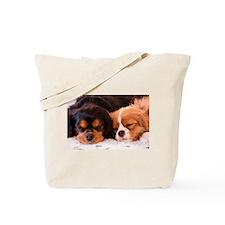 Sleeping Buddies Tote Bag