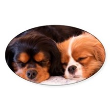 Sleeping Buddies Decal