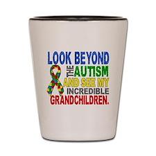 Look Beyond 2 Autism Grandchildren Shot Glass