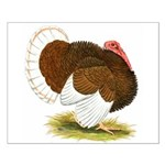 Bourbon Red Tom Turkey Small Poster