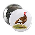 Bourbon Red Hen Turkey Button