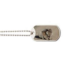 Baby Joey Koala Piggyback Ride Dog Tags