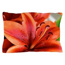 Orange Lilly  Pillow Case