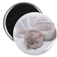 Chinchilla Magnet