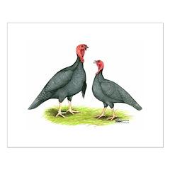 Blue Slate Turkeys Posters