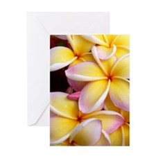 Hawaiian Plumeria Greeting Card
