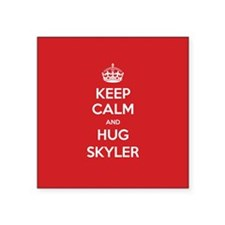 Hug Skyler Sticker