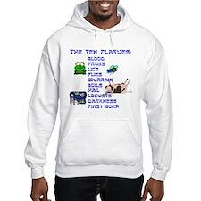 The Ten Plagues Hoodie