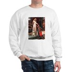 The Accolade Bull Terrier Sweatshirt