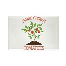 HOME GROWN TOMATOES Magnets