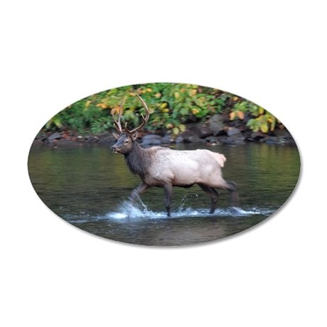 Bull Elk in river 20x12 Oval Wall Decal