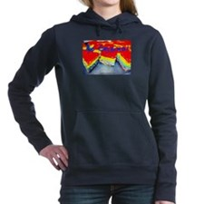 Be Original Rainbow Cheesecake Hooded Sweatshirt