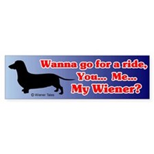Wanna Go For A Ride Bumper Car Sticker