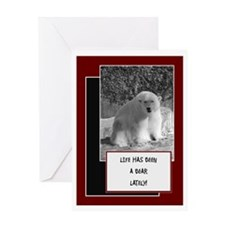 Life Has Been A Bear Lately - Card Greeting Cards