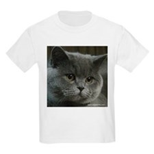 Cute British shorthair T-Shirt