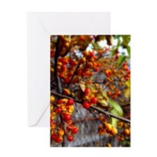 Fire Berries and Vines Greeting Cards