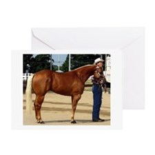Palomino Halter Quarter Horse Greeting Cards