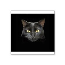 Dangerously Beautiful Black Cat 3&Quot; Lapel Stic