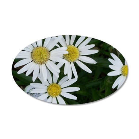 Daisy Delight 20x12 Oval Wall Decal