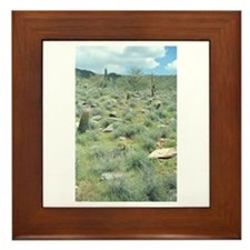 Stepping Stones Desert Framed Tile