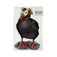 Tufted Puffin Rectangle Magnet