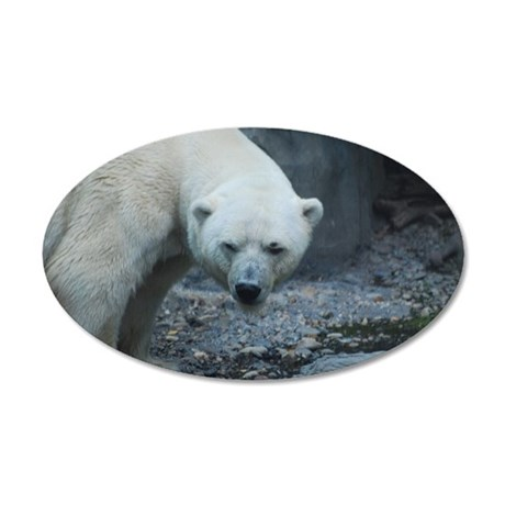 Really Cute White Polar Bear 35x21 Oval Wall Decal