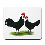 Whitefaced Spanish Chickens Mousepad