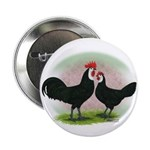 Whitefaced Spanish Chickens2 Button