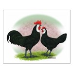 Whitefaced Spanish Chickens2 Small Poster