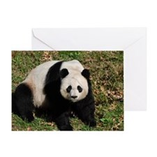 Awkward Sitting Panda Bear Greeting Card