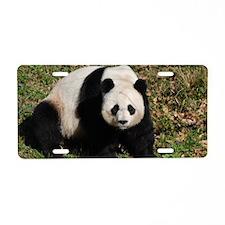 Awkward Sitting Panda Bear Aluminum License Plate