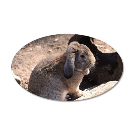 Cute Rabbit 20x12 Oval Wall Decal