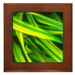 Grass Framed Tile