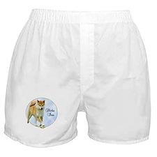 Shiba Portrait Boxer Shorts