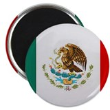 Cute Mexican flag Magnet