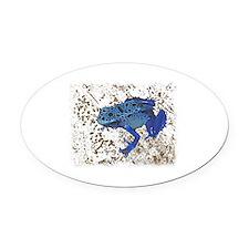 Blue Frog Oval Car Magnet