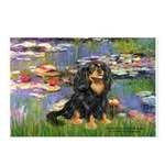 Lilies (2) & Cavalier (BT) Postcards (Package of 8