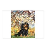 Spring & Cavalier (BT) Postcards (Package of 8)